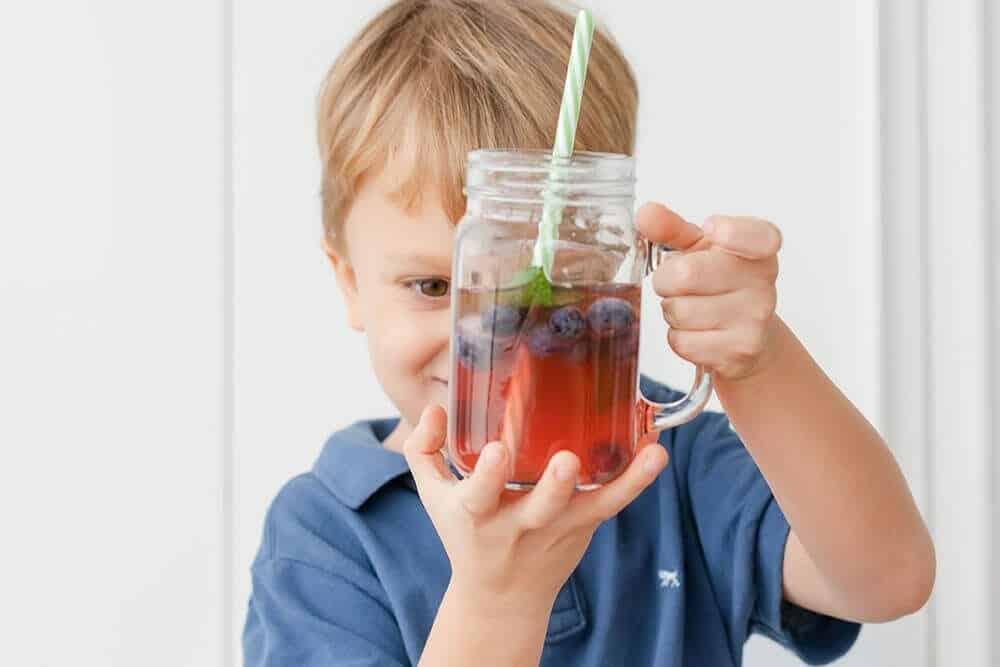 Akesi Bio-Fermented Berry Spritzer